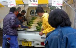新鮮野菜(にんじん、大根、パクチー)