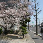 01産業道路沿い(平井4丁目)