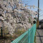 06川東町内の公園