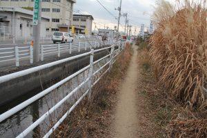 整備前の側道。雑草が茂っていた(北から撮影)