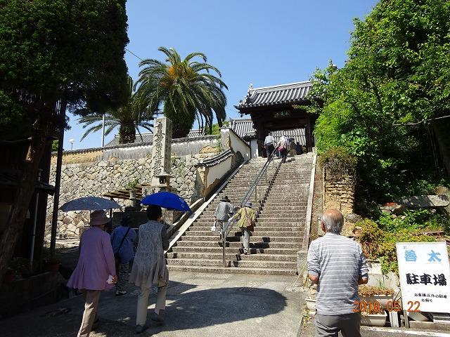 本蓮寺山門