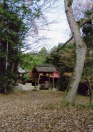 岡山県指定大井宮山郷土自然保護地域