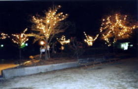 大元中央公園の冬景色