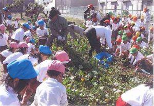 幼稚園児と野菜作り(農業指導)