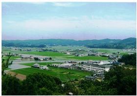 幸島稲荷神社から新田を一望