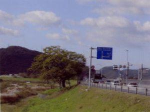 国道2号線(旧山陽道)一日市の一里塚大榎
