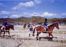 両備乗馬クラブ