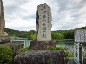 清水白桃発祥の地 石碑1