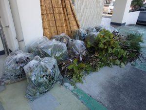 回収した70リットル袋と剪定枝