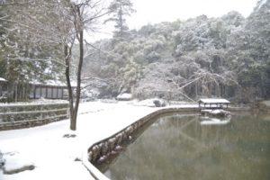 曹源寺中庭の雪景色