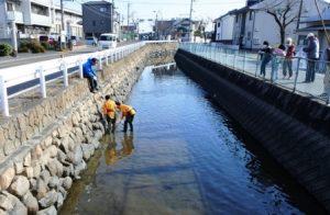 川に入って清掃する中学生ボランティア