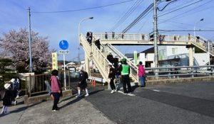 きれいになった歩道橋を渡って登校