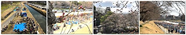 岡山市電子町内会 内山下地区https://townweb.e-okayamacity.jp/c-uchisange-r/?p=463&preview=true連合町内会